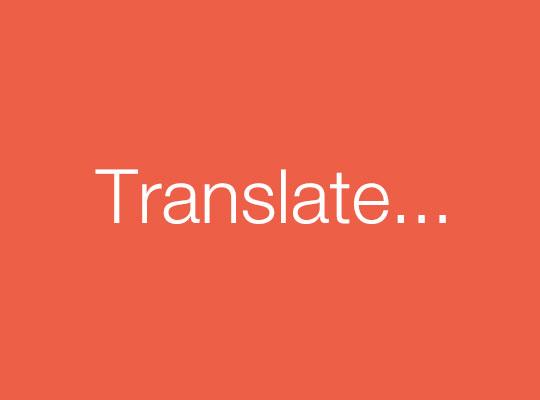 Translate Everything