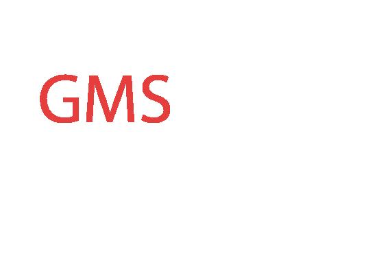 gms-icon
